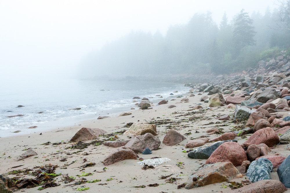 2015-06-08 Leandra Design Seal Harbor WEB © Jeff Roberts Imaging (22).jpg