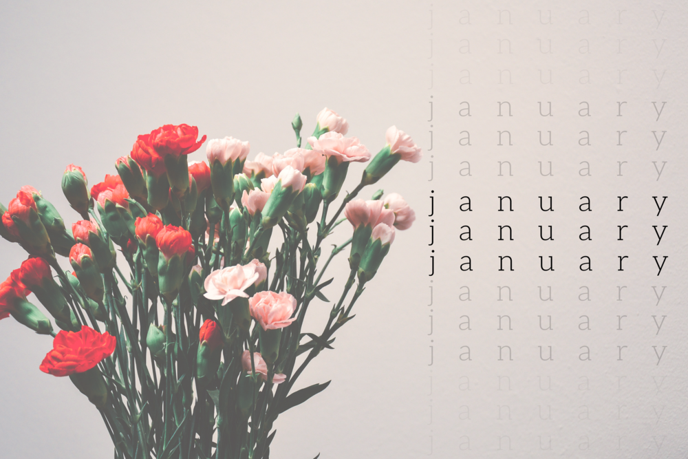 february-2.png