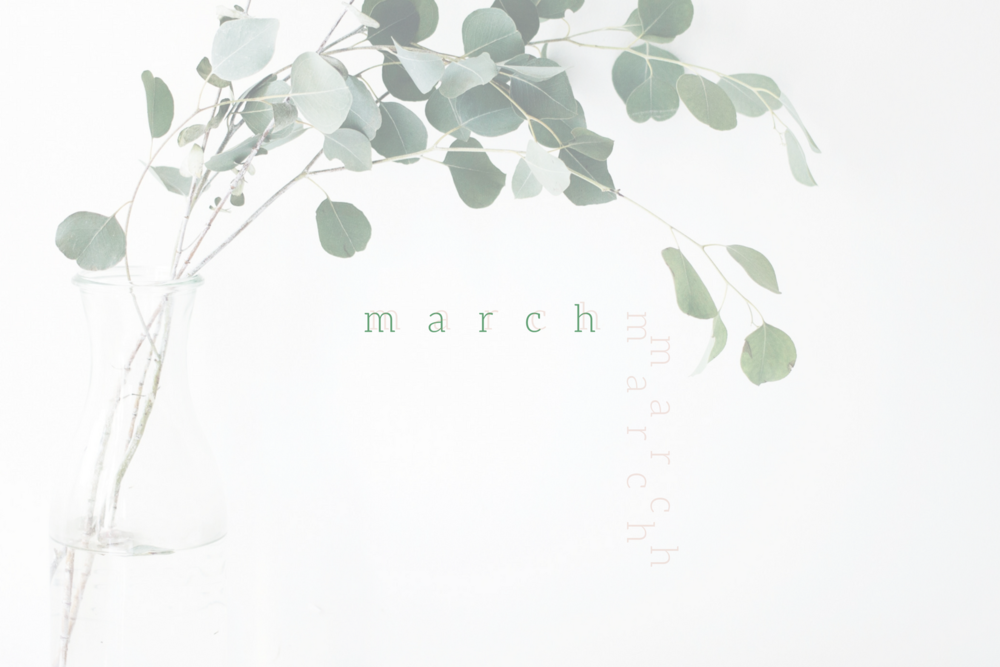 february-3.png