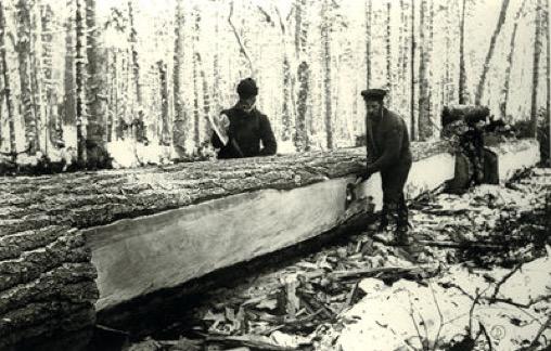 timbertrade1.jpg