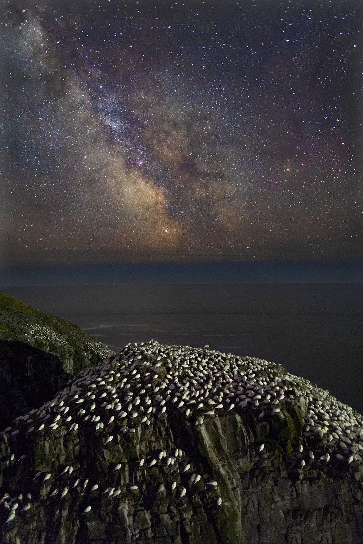 PLACES_Newfoundland_001.JPG