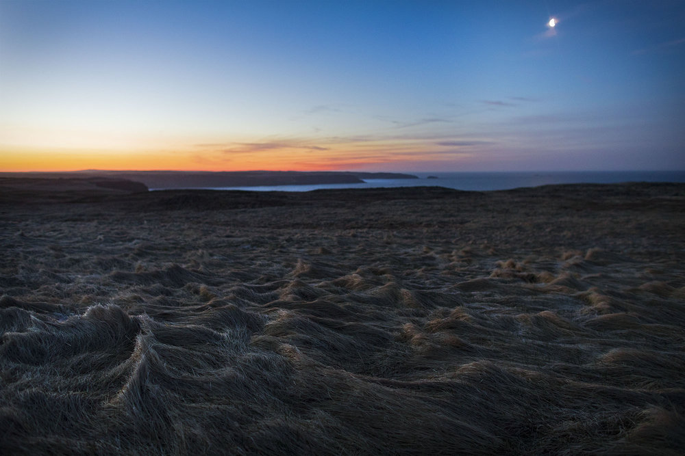 PLACES_Newfoundland_0010.JPG