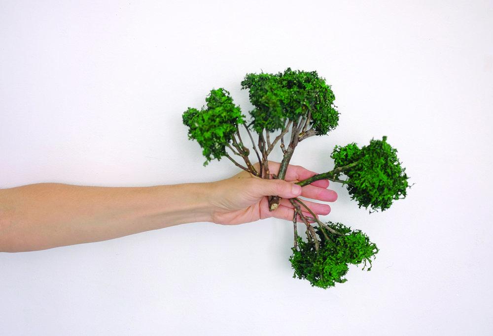 Hand and Tree, Rita Alaoui