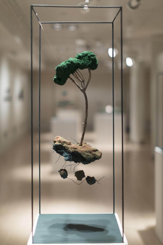 Uprooted Tree, 2017, Casa Arabe | Laura M. Lombardia