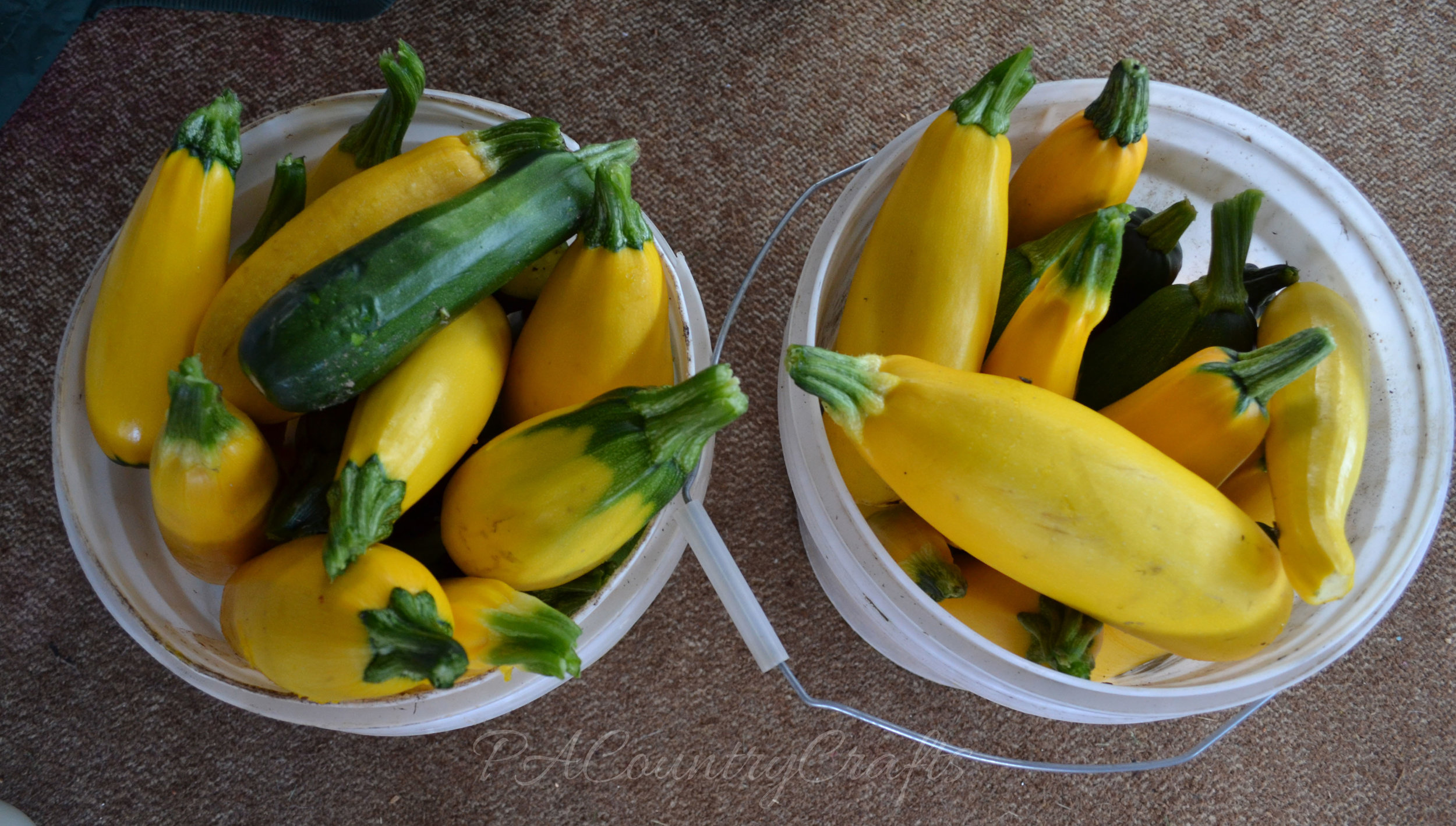buckets of zucchini