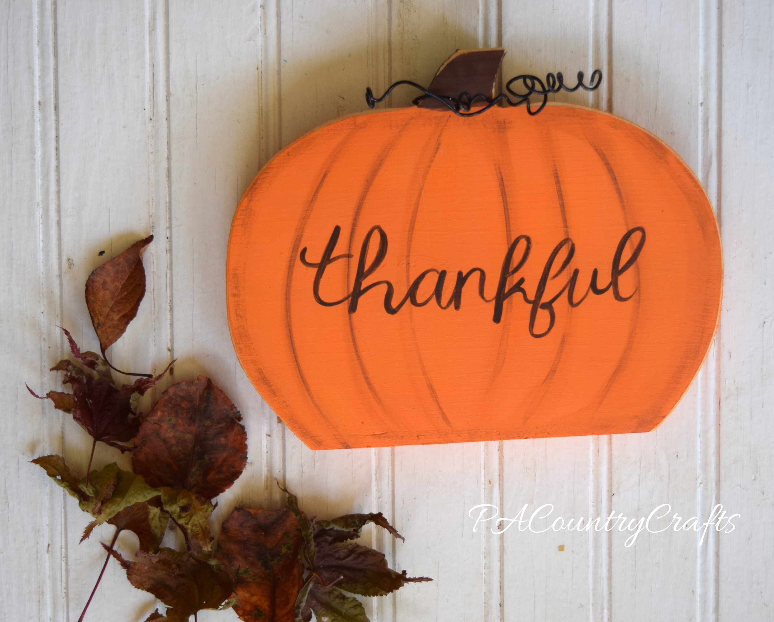 curly thankful pumpkin