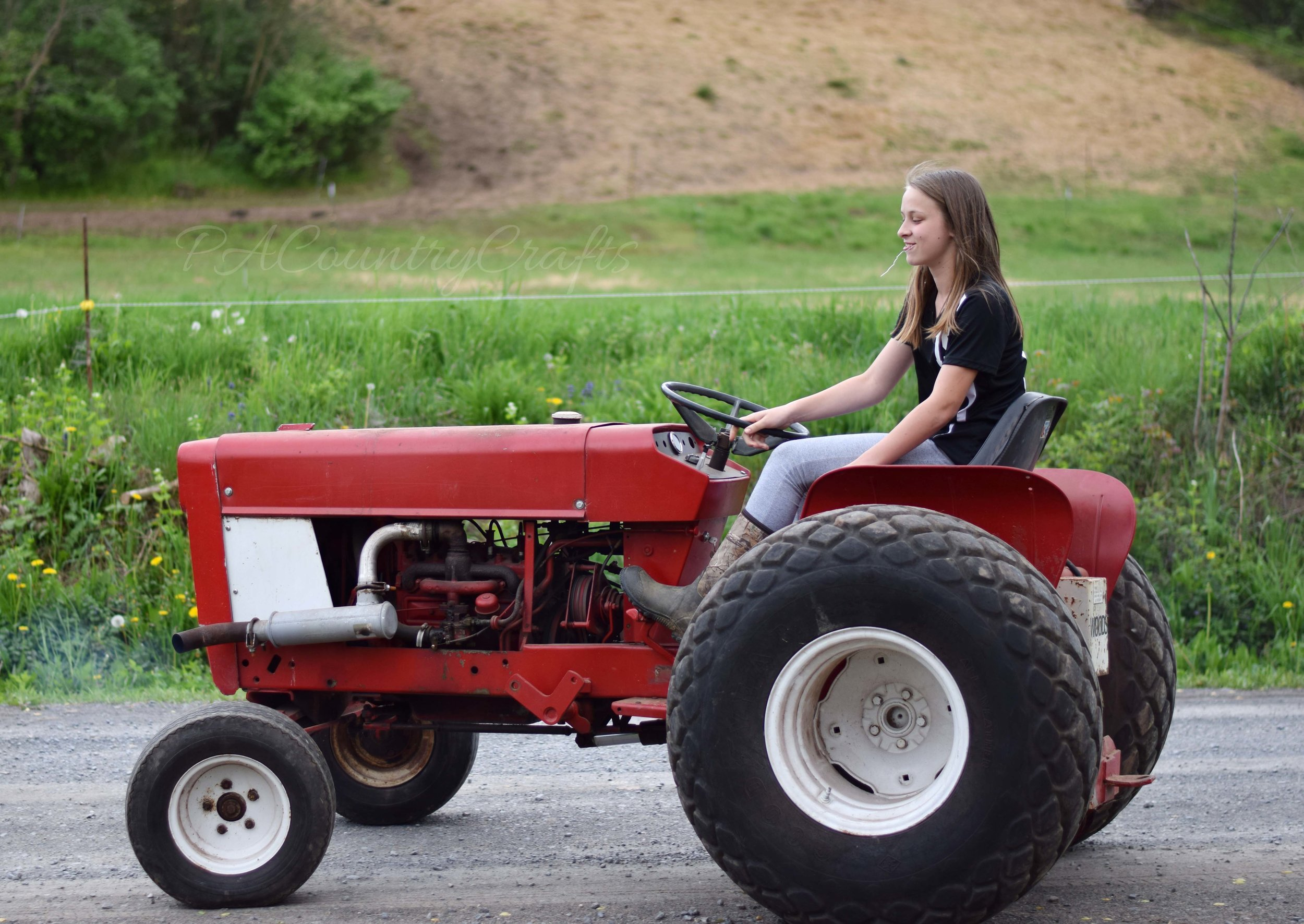 halley-on-the-tractor-wm