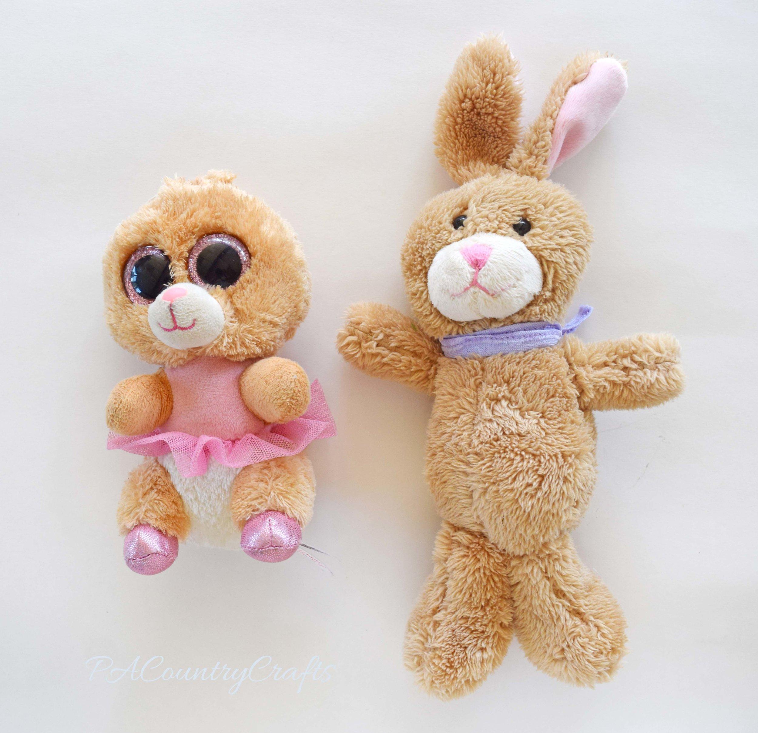 bunny-ear-transplant