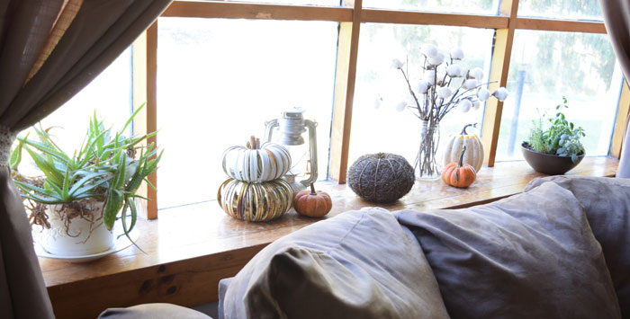 fall-neutral-window-display.jpg