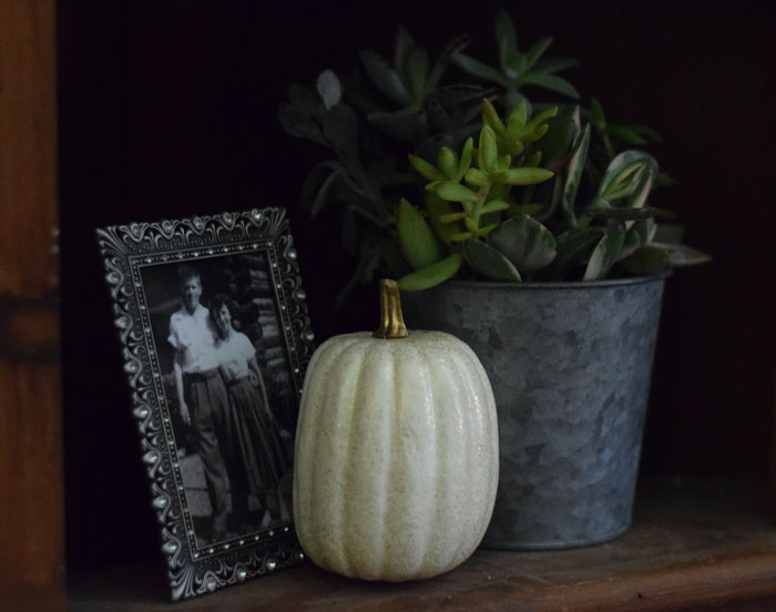 succulent-fall-decor.jpg
