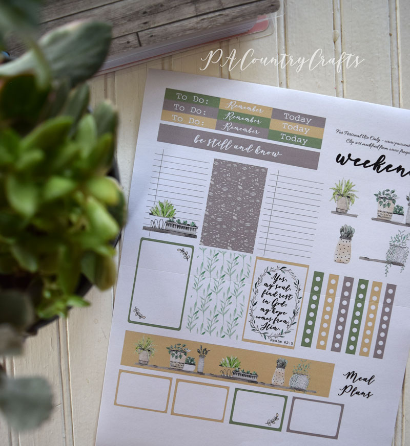 Succulents Planner Stickers