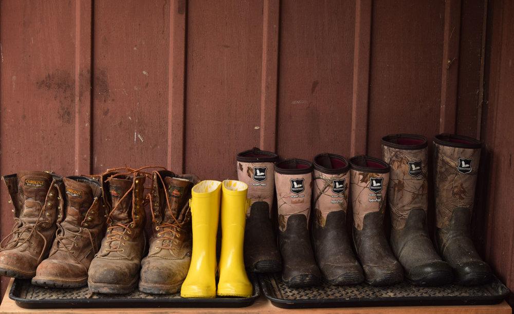 yellow-boots.jpg