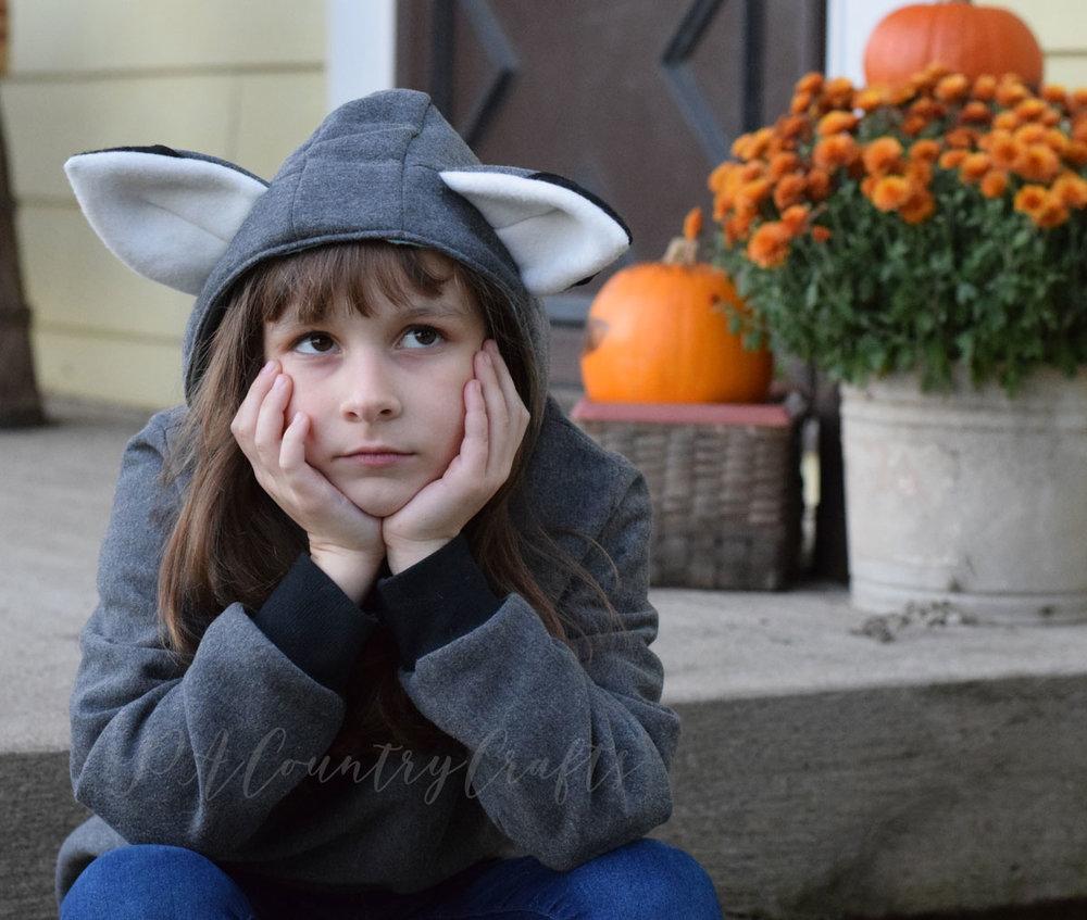 fox-hooded-sweatshirt.jpg