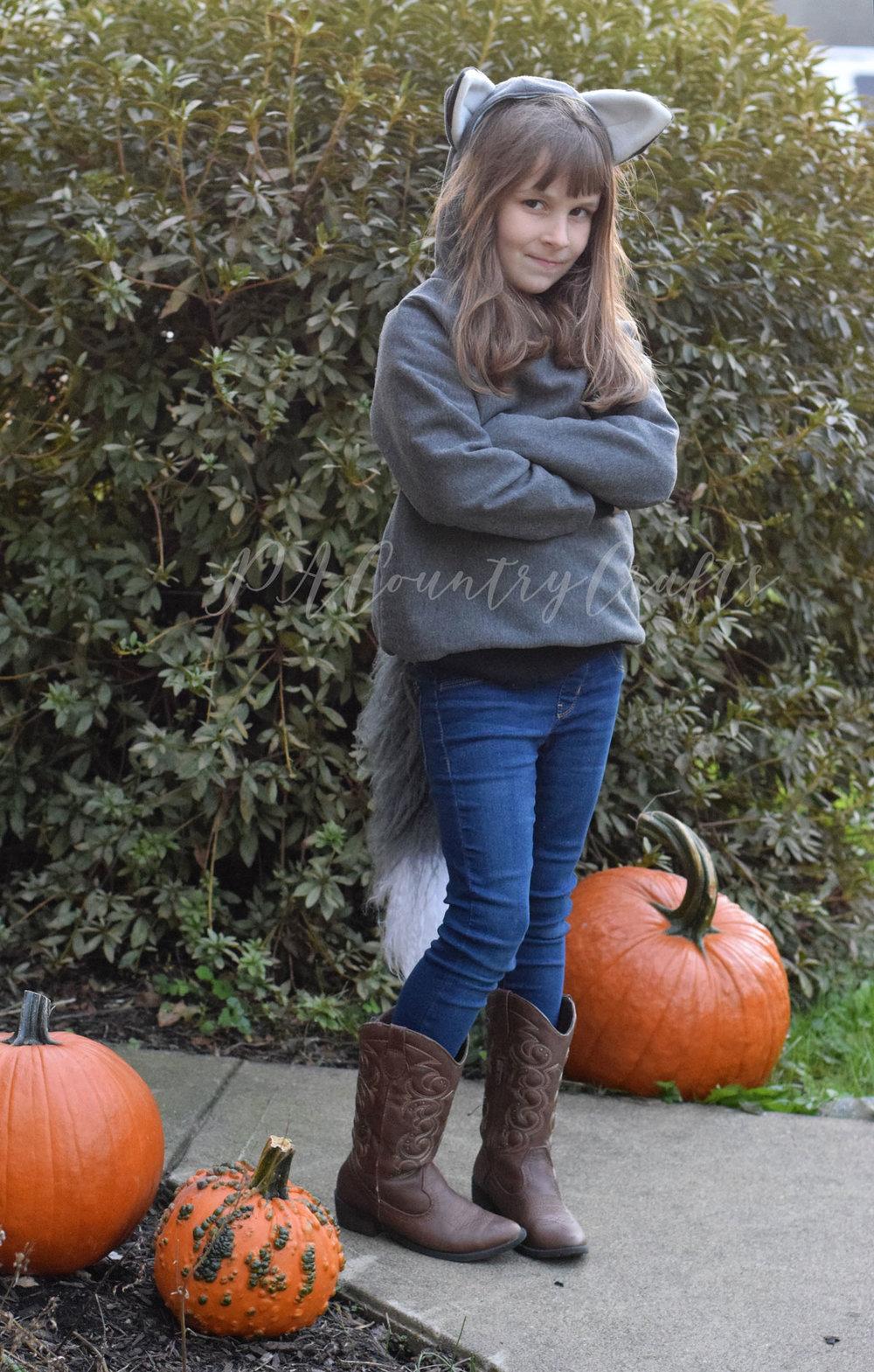 fox-sweatshirt-costume.jpg