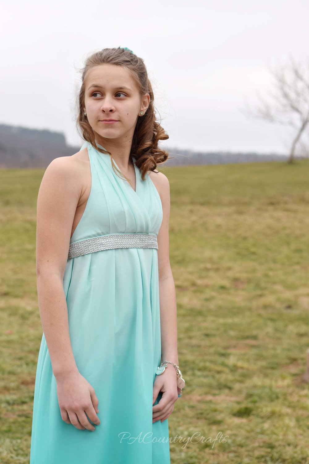 The Last Easter Dress