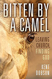 Bitten by a Camel book cover