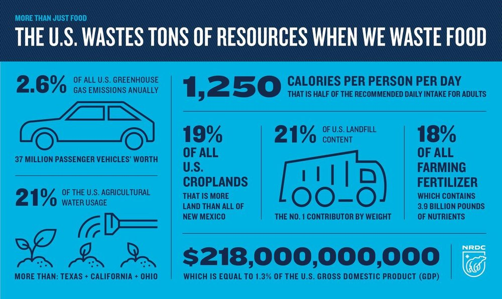 https://www.nrdc.org/resources/wasted-how-america-losing-40-percent-its-food-farm-fork-landfill
