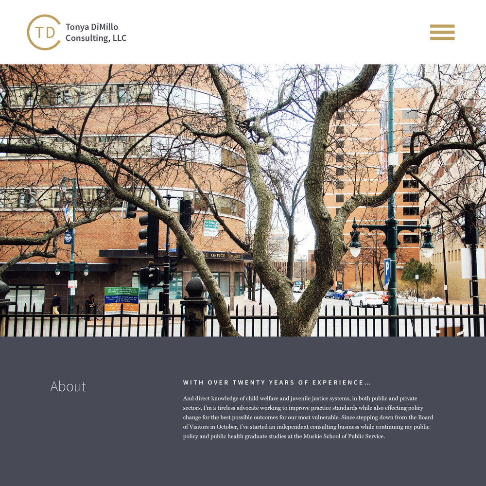 TDC-Website-mockup.jpg