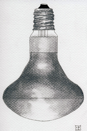 bulbs-1.jpeg