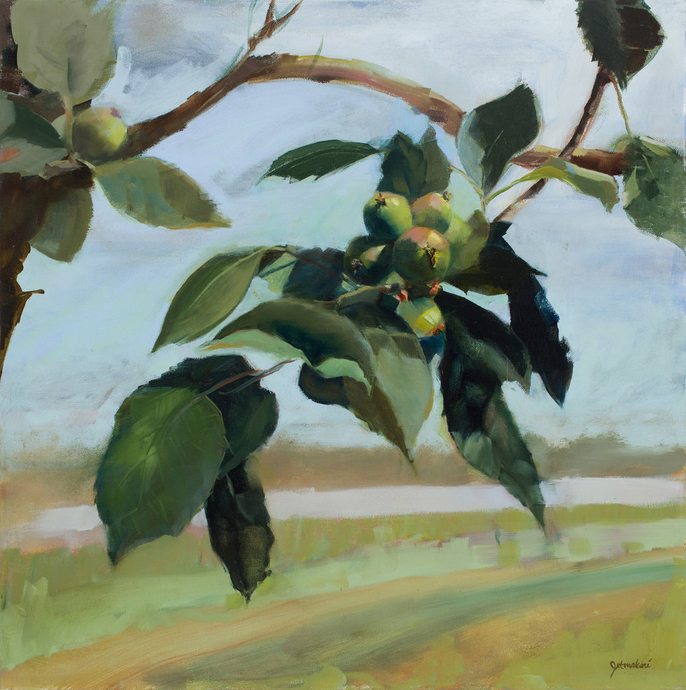 Pioneer Orchard    Oil on Canvas 24x24 inches
