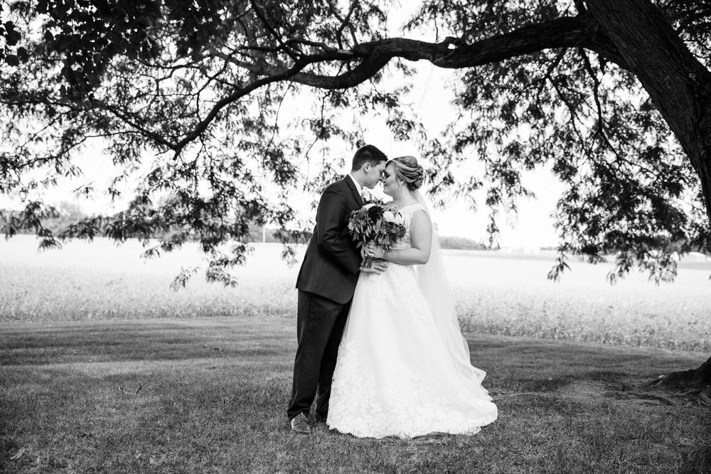 farmhouse weddings goshen photography grant beachy south bend elkhart -029.jpg