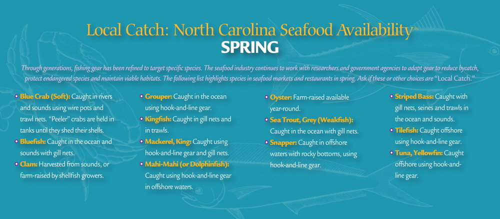 localcatch_spring-2.jpg
