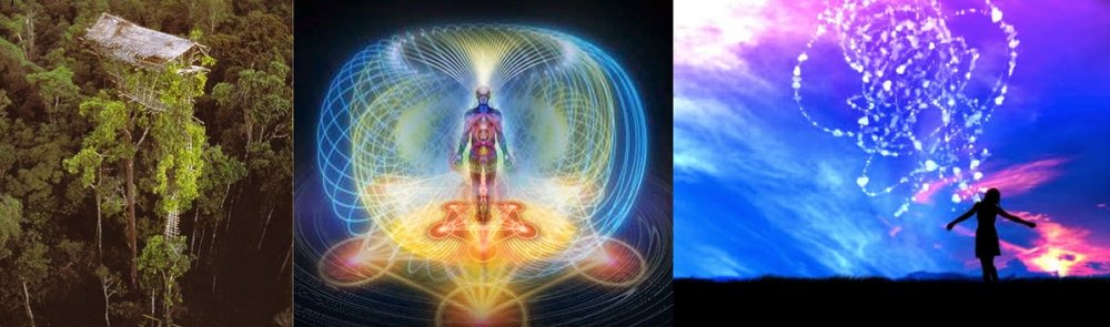 ascension and the fith dimension.jpg