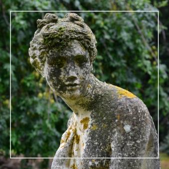 The Gardens -