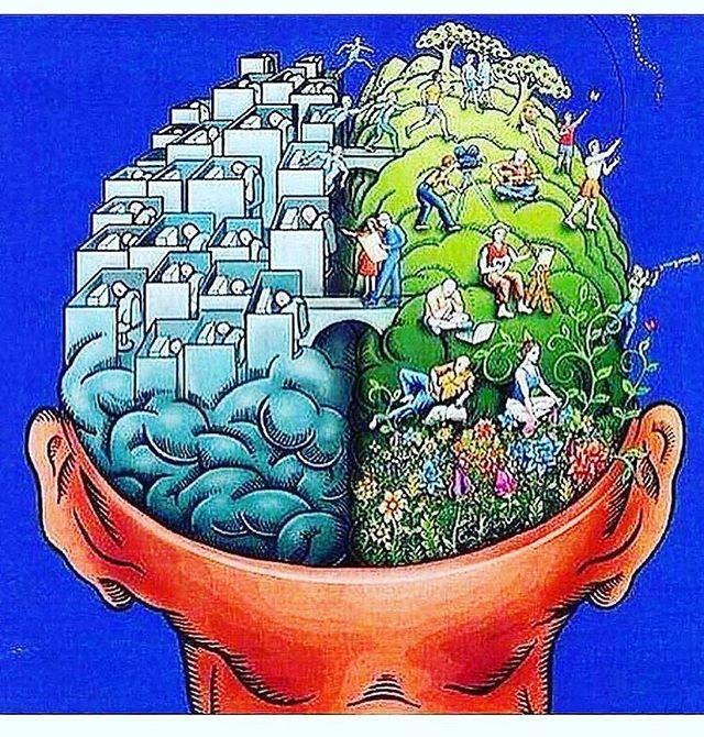 How do you nourish your mind #healthy #mind #health #nourish 📷 @alittlebitgreener