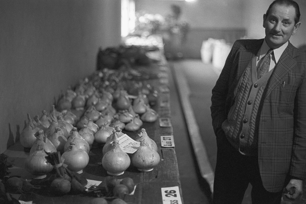 Bill Smale and his prize onions, St Giles in the Wood, 1974