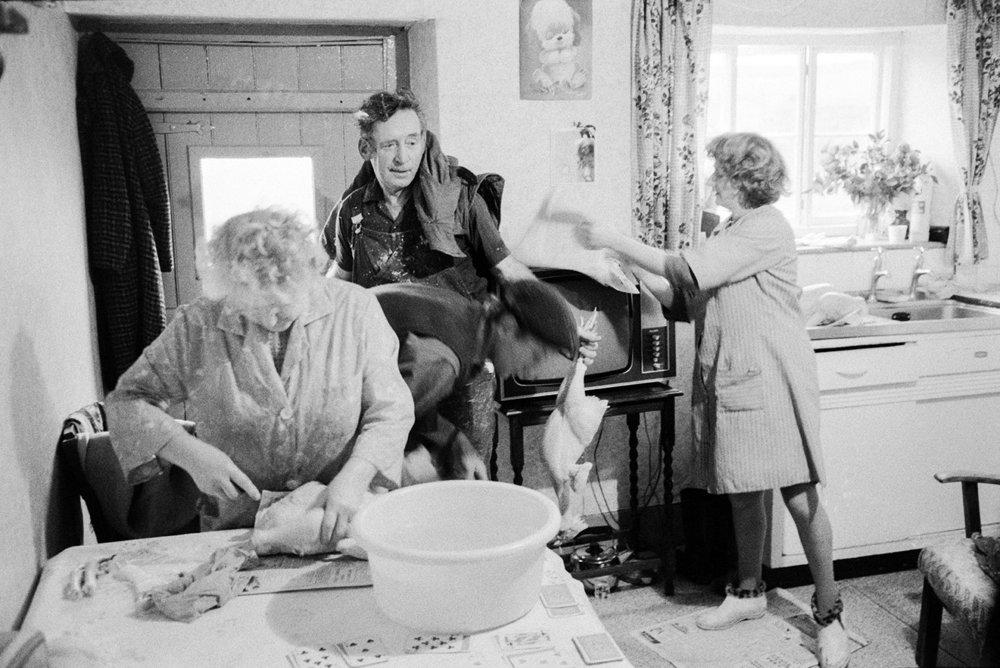 Kitchen scene, preparing plucked chickens, Beaford, 21 December 1971.