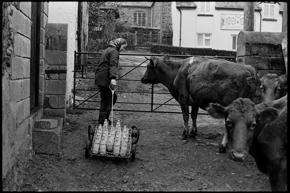 Jim Woolacott taking milk churn to stand in middle of village, Atherington, Dec 1977