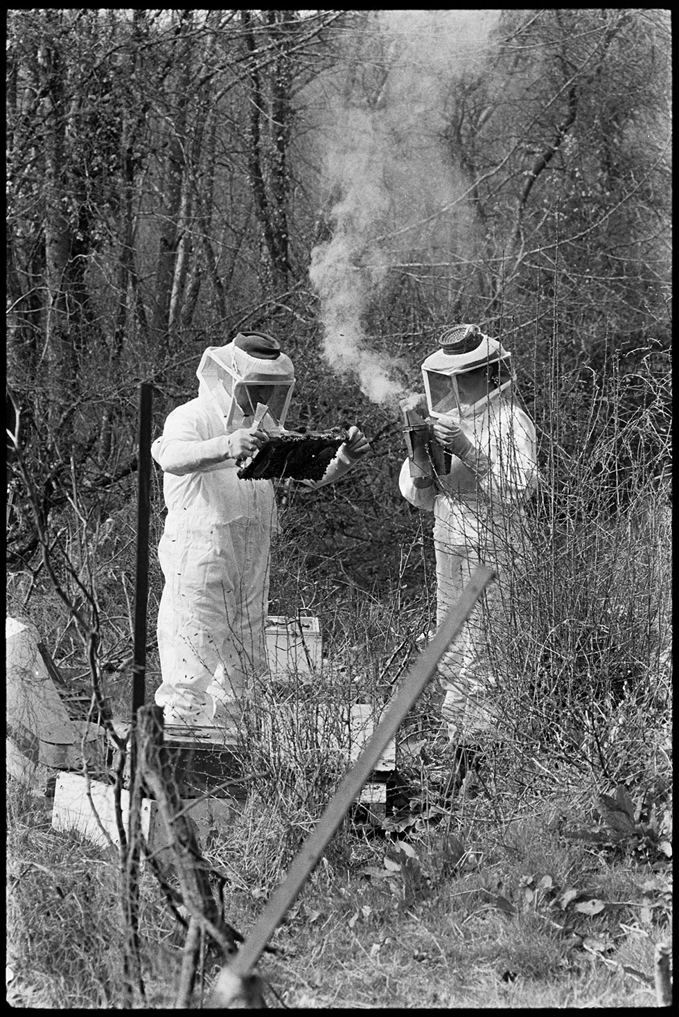 Bee keepers - Rose & Michael Mitchell, Dolton, Addisford, April 1974.