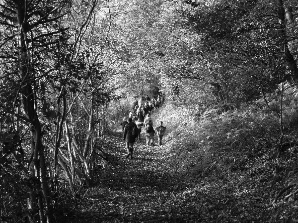 SM Community Trail.jpg