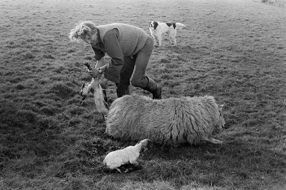 Documentary photograph by Roger Deakins for the Beaford Archive © Beaford Arts