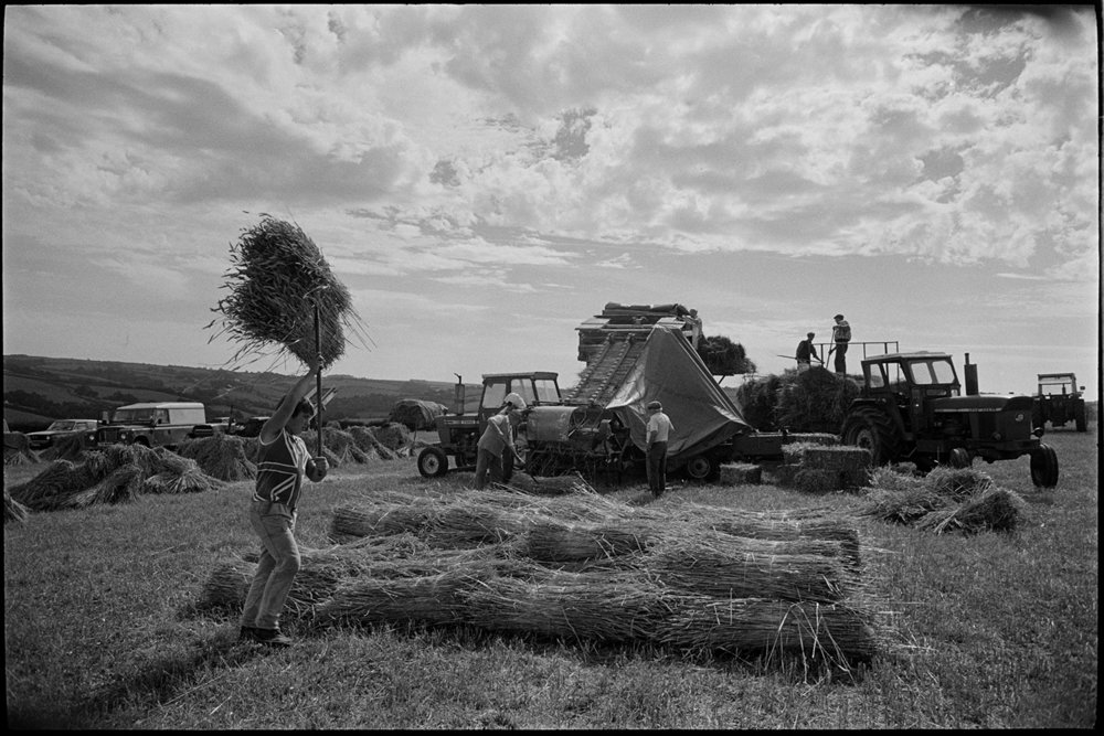 Reedcombing in harvest field men carrying nitches of wheat to reedcomber, Spittle Farm, Chulmleigh, August 1987. A documentary photograph by James Ravilious for the Beaford Archive