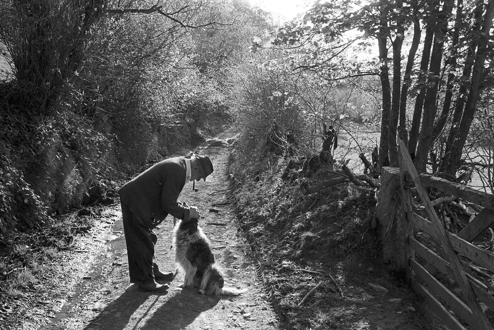 Archie Parkhouse and his dog Sally, Near Budds Mill, Millhams, Dolton, April 1982