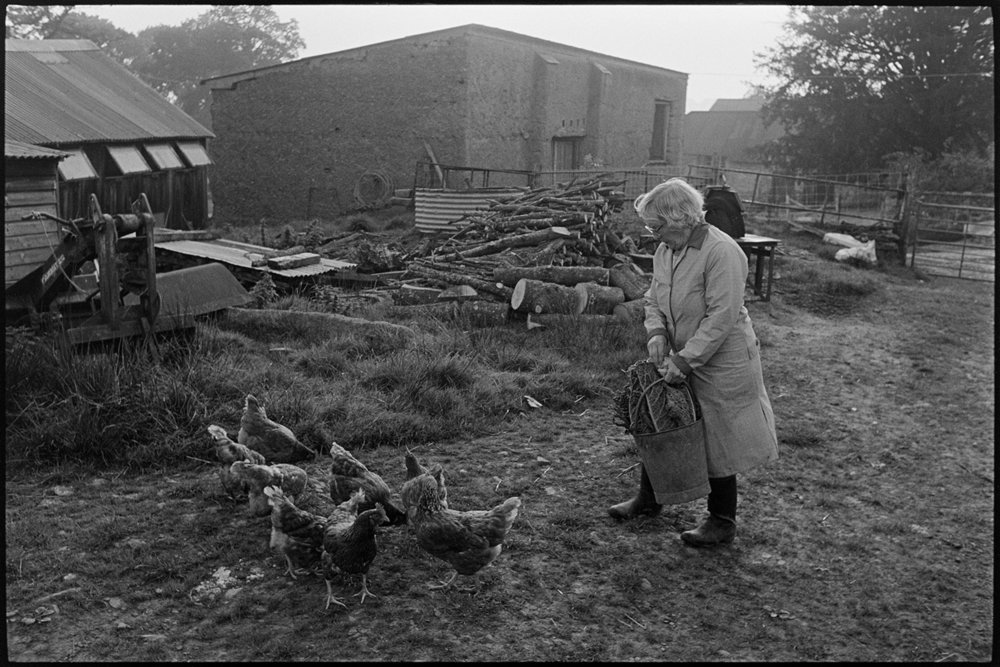 May Pugsley feeding chickens, Dolton, Lower Langham, October 1985. Documentary photograph by James Ravilious for the Beaford Archive.