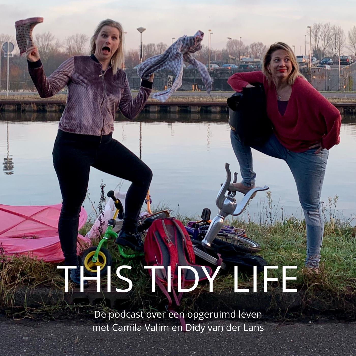 This Tidy Life - de podcast over een opgeruimd leven logo