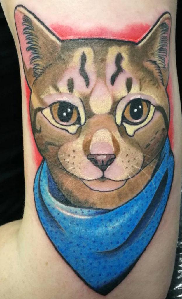 cat-1-624x1024.jpg