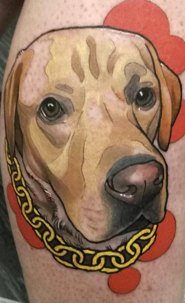 dog-6-624x1024.jpg