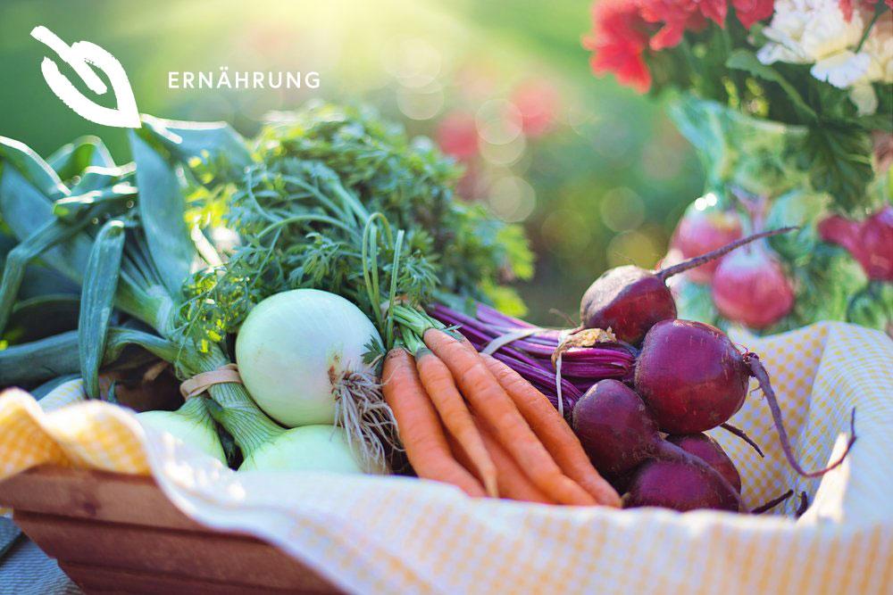 RAW FOOD - DEMNÄCHSTRaw Rood: Rohkost, bedeutet, dass nur rohe Nahrungsmittel auf dem Tisch kommen. Denn beim Erhitzen von Früchten und Gemüse über 42 Grad kann ein hoher Anteil an Vitaminen und anderen wichtigen Pflanzenstoffen verloren gehen. Superfood: Lebensmittel, die viele wertvolle Nährstoffe vereinen. Manche wirken entgiftend, andere antioxidativ oder entzündungshemmend. Lernen Sie die Besonderheiten dieser Küche kennen und kombinieren Sie Raw Food Gerichte mit Superfoods. Eine echte Powerkombination!Mit unserem Programm bieten wir Ihnen einen umfassenden Einblick zum Ernährungstrend Raw Food sowie zu den Superfoods. Tolle Rezepte, gemeinsame Kochabende und ein ergänzendes Trainingsprogramm runden Ihren Aufenthalt ab.