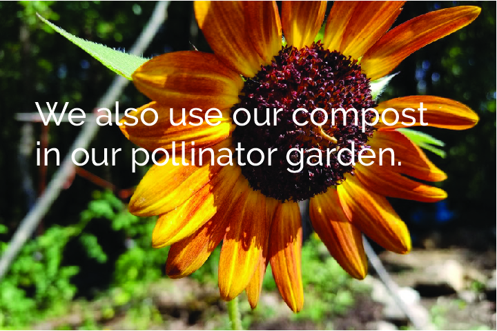 compostableproducts-100.jpg