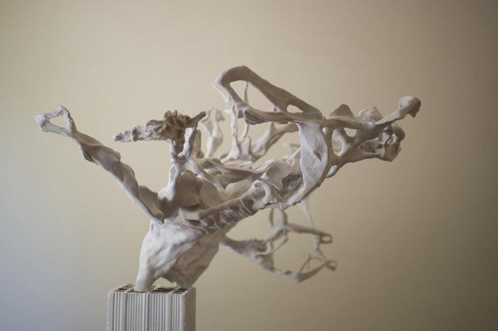 Chalamov - la résurrection du mélèze