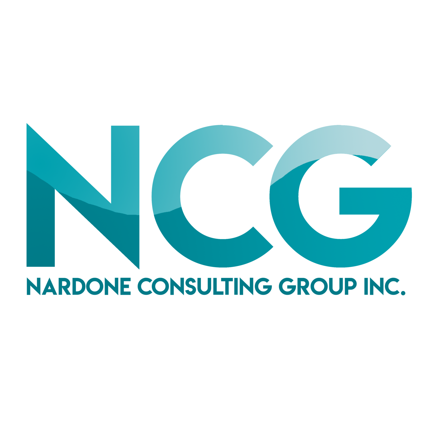 Nardone Consulting Group, INC.