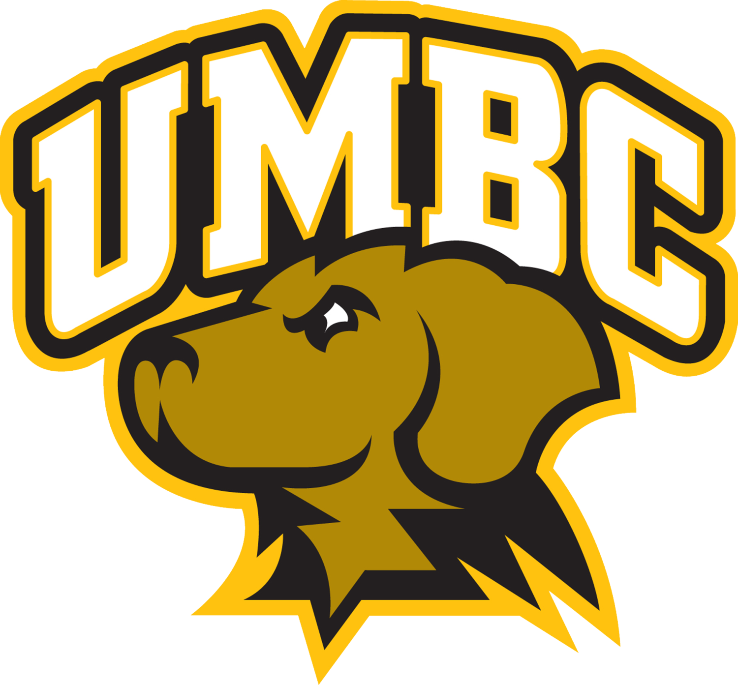UMBC Volleyball Camps