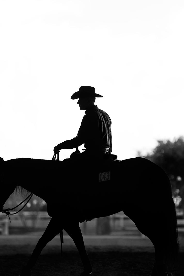 LYELLOVETT.HORSE.jpg
