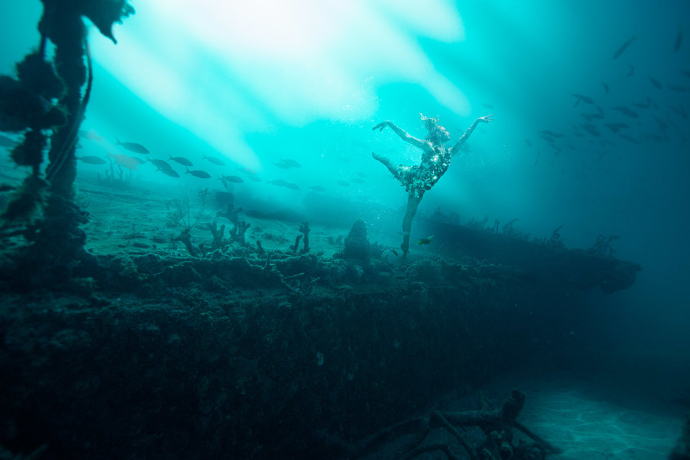BEAUTY & THE REEF -
