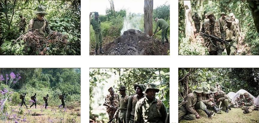 dswt-anti-poaching.jpg