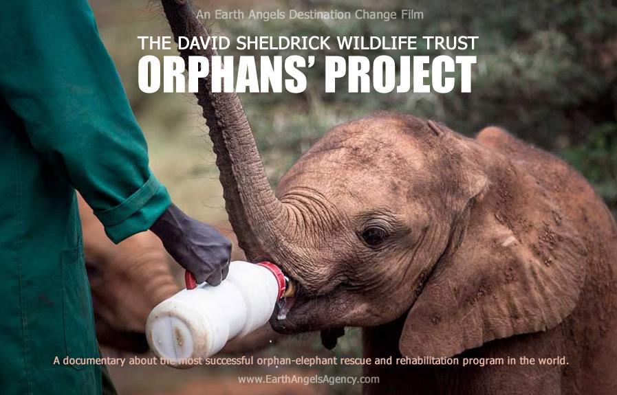 Destination-Change-Orphans-Project_v2.jpg